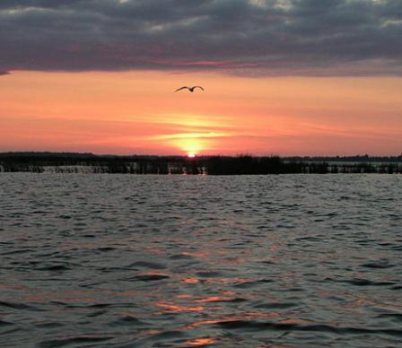 озеро сурское днепропетровская обл рыбалка